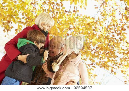 Grandparents And Grandchildren Playing Under Autumn Tree