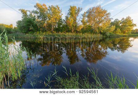 Nice morning scene on river