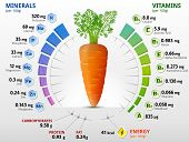 pic of carrot  - Infographics about nutrients in carrot - JPG