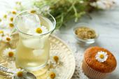 picture of chamomile  - Glass of chamomile tea with chamomile flowers and tasty muffin on color wooden background - JPG