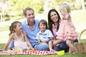 stock photo of 16 year old  - Family Enjoying Picnic Together - JPG