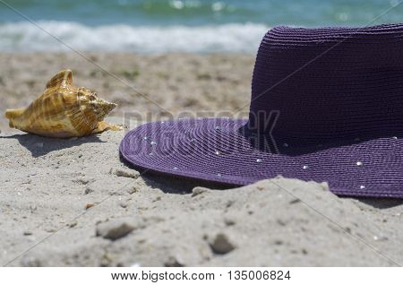 Purple hat and clam shell on the beach