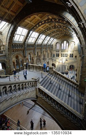 LONDON - OCTOBER 03: Interior view of Natural History Museum on October 03 2014 in London UK. It is one of three large museums on Exhibition Road in South Kensington