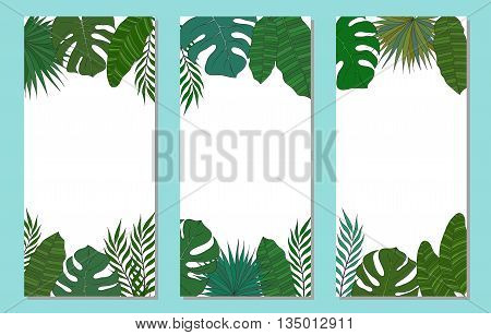 Vertical frame of leaves of different species of palm trees. Tropical card or banner.