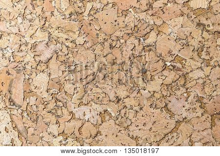 cork surface for background empty notice board
