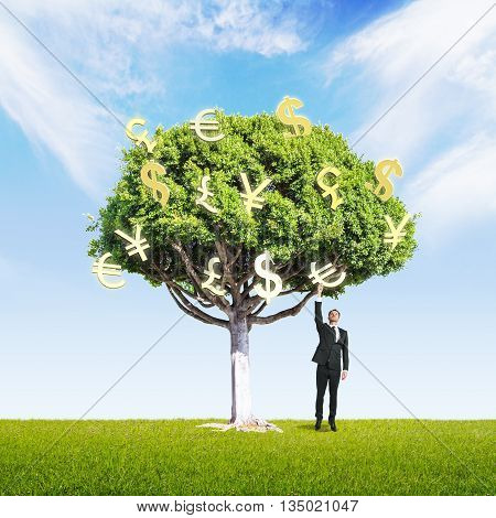 Businessman picking golden currency signs from money tree on green grass and bright sky background. Concept of financial growth. 3D Rendering
