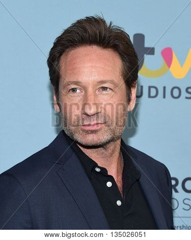 LOS ANGELES - JUN 16:  David Duchovny arrives to the