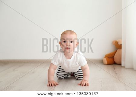 Baby boy crawling in the room