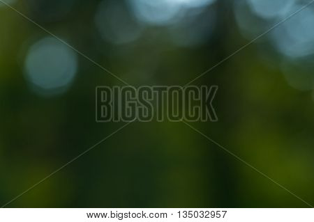 Natural Bokeh Background.
