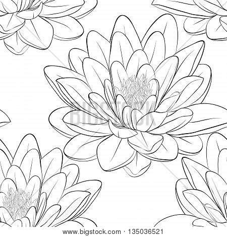 Beautiful monochrome black and white seamless pattern with lotus flowers. Hand-drawn contour lines and strokes. Perfect for background greeting cards and invitations of the wedding birthday