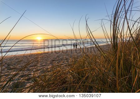 Papamoa beach thorugh the marram beach grass looking into sunrise with two small unidentifiable walkers in distance.