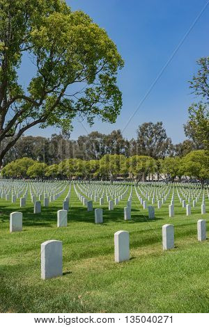 American Soldier Graves