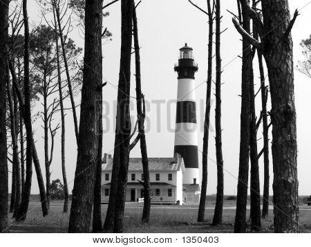 Lighthouse Beyond The Trees