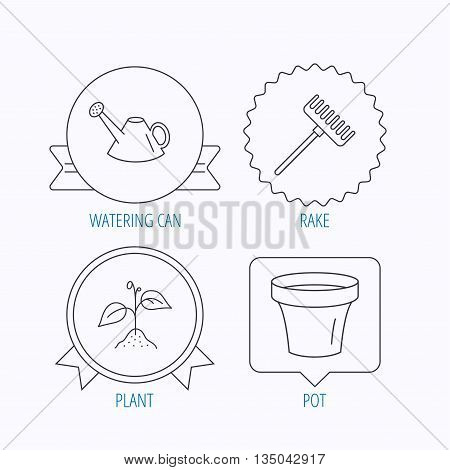 Sprout plant, watering can and pot icons. Rake linear sign. Award medal, star label and speech bubble designs. Vector