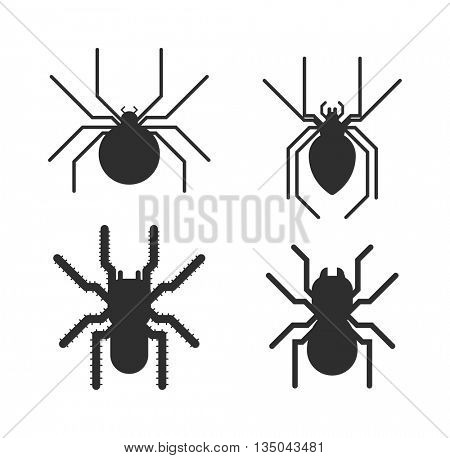 Vector poisonous spiders.