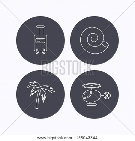 Palm tree, shell and helicopter icons. Suitcase on wheels linear sign. Flat icons in circle buttons on white background. Vector