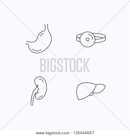 Kidney, liver and stomach organ icons. Medical mirror linear sign. Flat linear icons on white background. Vector
