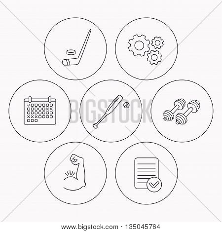 Baseball, ice hockey and fitness sport icons. Muscle linear sign. Check file, calendar and cogwheel icons. Vector