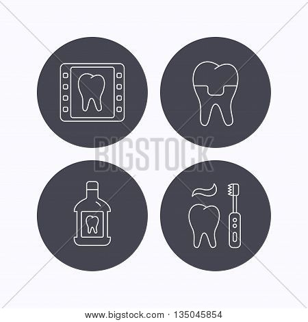 Dental crown, x-ray and brushing teeth icons. Mouthwash linear sign. Flat icons in circle buttons on white background. Vector