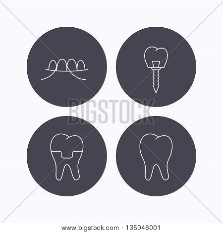 Dental implant, floss and tooth icons. Dental crown linear sign. Flat icons in circle buttons on white background. Vector