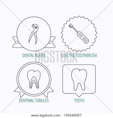 Tooth, electric toothbrush and pliers icons. Dentinal tubules linear sign. Award medal, star label and speech bubble designs. Vector