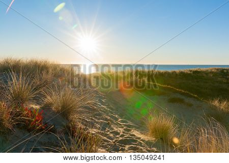 Lens flare created as sun bursts over sea and sand dune at Papamoa beach