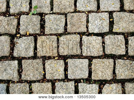 stone block paving with fallen leaf