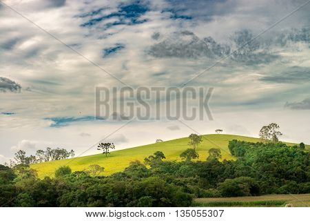 Mountains And Nature On Summer Afternoon