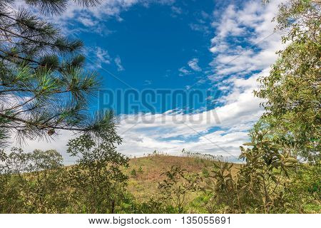 View Of The Nature With Bright Sky