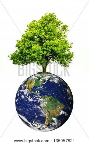 Tree on top of the world. Save the environment. Globe image courtesy of NASA - Visible Earth