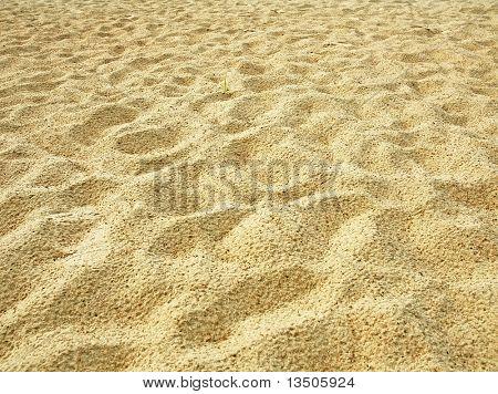 rough sand dune