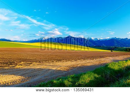 Beautiful spring plowed field and green and yellow meadow. Mountain in background