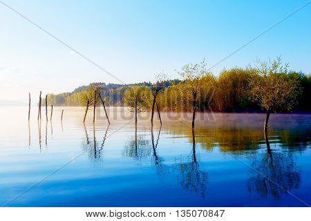beautiful lake view in morning fog with mystic mountains and trees as leftovers of a mole in purple - blue tones. Slovakia Central Europe region Liptov