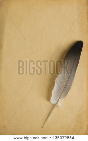 Quill. Vintage style