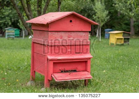 Colourful beehives.Beehives with bees in a honey farm