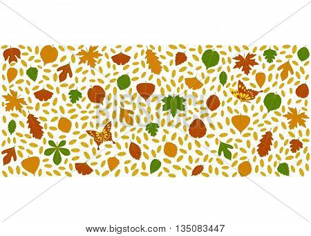 Autumn  background made of different tree leaves. Various elements for design. Cartoon vector illustration.