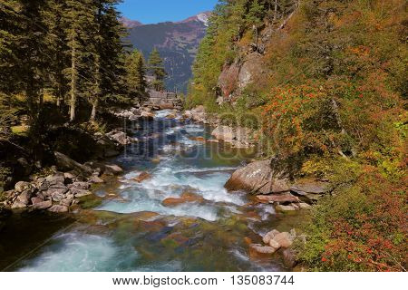 Rapid mountain stream of coniferous forests. Pastoral in the Alpine mountain valley in Austria. Cascades of cold water at the source of the Krimml waterfalls