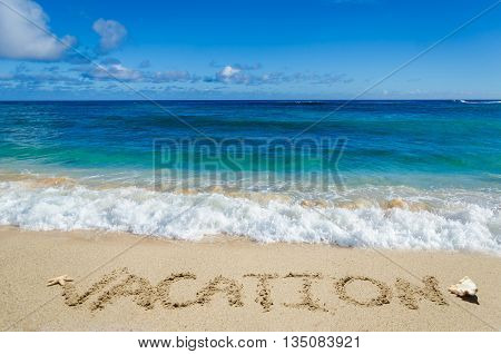 Vacation background on the sandy beach with seashell and starfish