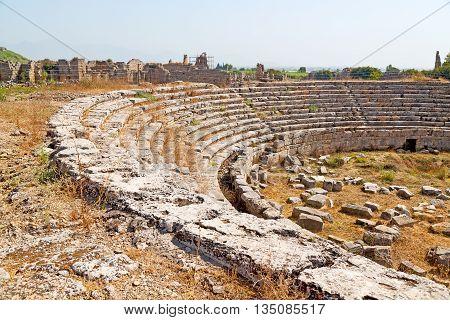 Bush  In   Greece And  Roman Temple