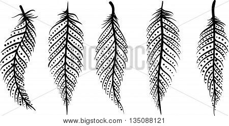 set of five black and white decorative line art feathers with dots