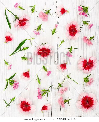 Carnation Flowers On Light Rustic Wooden Background.