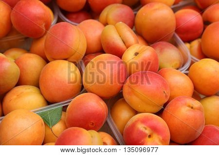 Fresh Apricots in Boxes on Farmers Market