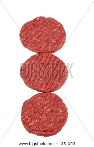 Hamburger Series (Raw Meat)