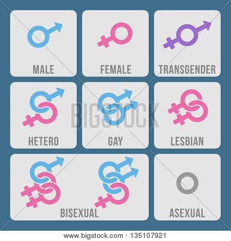 Vector gender and sexual orientation color icons set. Gnder sexual, male gender gay, gender lesbian, gender heterosexual illustration