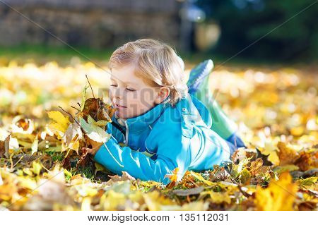 Little funny kid boy playing with colorful maple leaves in park. Kid boy having fun on sunny warm october autumn day. Season, children, lifestyle concept