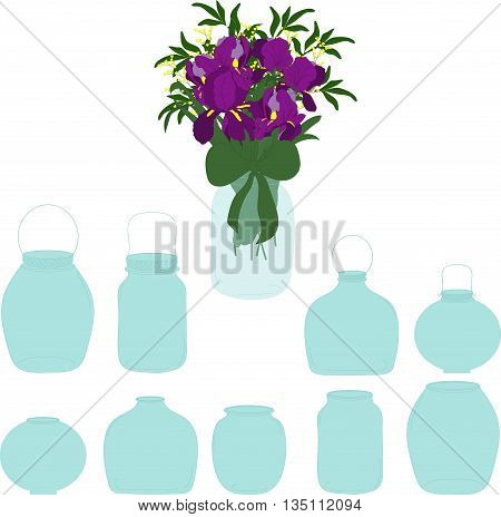 Jars set, bouquet of irises in a jar, vector illustration.