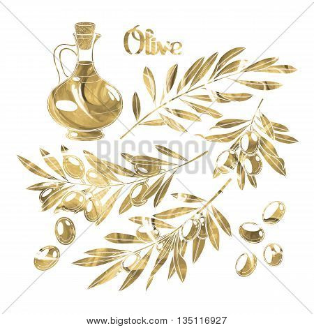 Graphic olive collection isolated on white background. Olives on the branches. Olive oil in the glass bottle. Vector natural design with golden acrylic texture