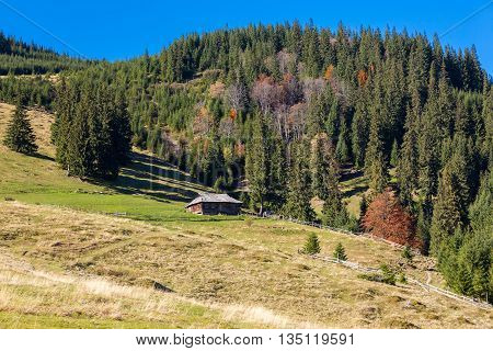 Mountains with Autumnal Forest and Shepherds Wooden Hut on Grassy Meadow Sunny Day Blue Sky