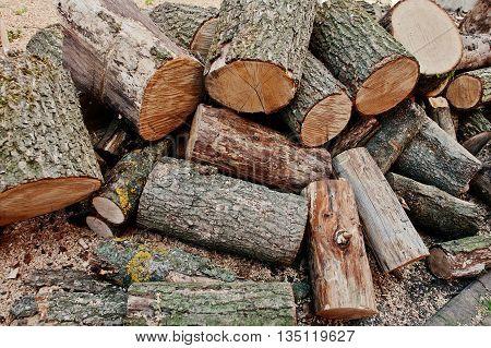 A Pile Of Chopped Wood, Sawn Wood