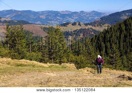 Female Hiker with Backpack and Trekking Pole Walking on Pathway in Autumnal Forest European Rural Landscape Outdoor Sunny Day